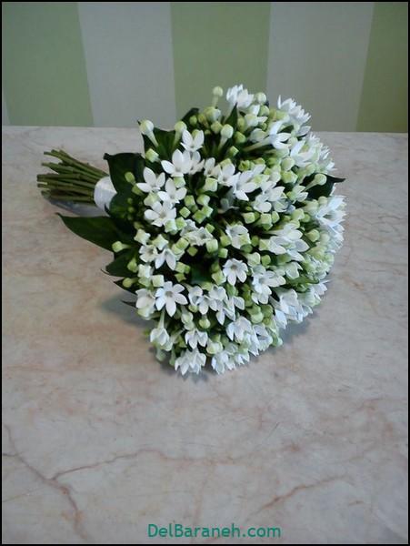 دسته گل عروس (۲۰)