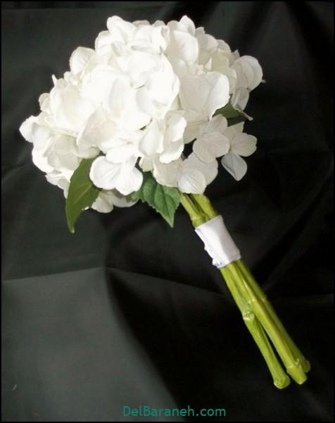 عکس دسته گل عروس (۱۹)