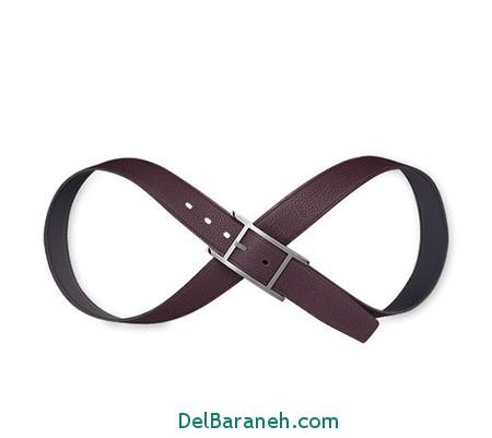 Model-Belts11