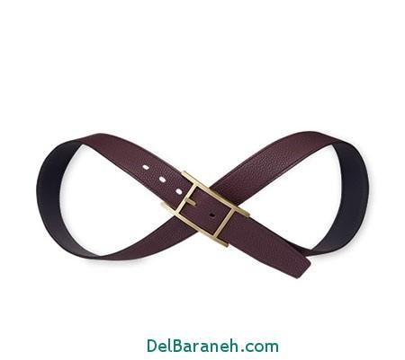 Model-Belts12