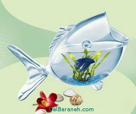 مدل تنگ ماهی