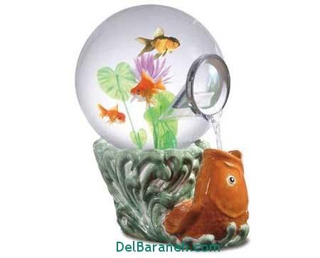 مدل تنگ ماهی (7)