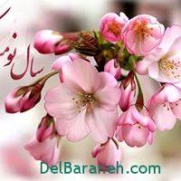 انشاء درباره ی عید نوروز ۹۵+انشا با موضوع نوروز ۹۵