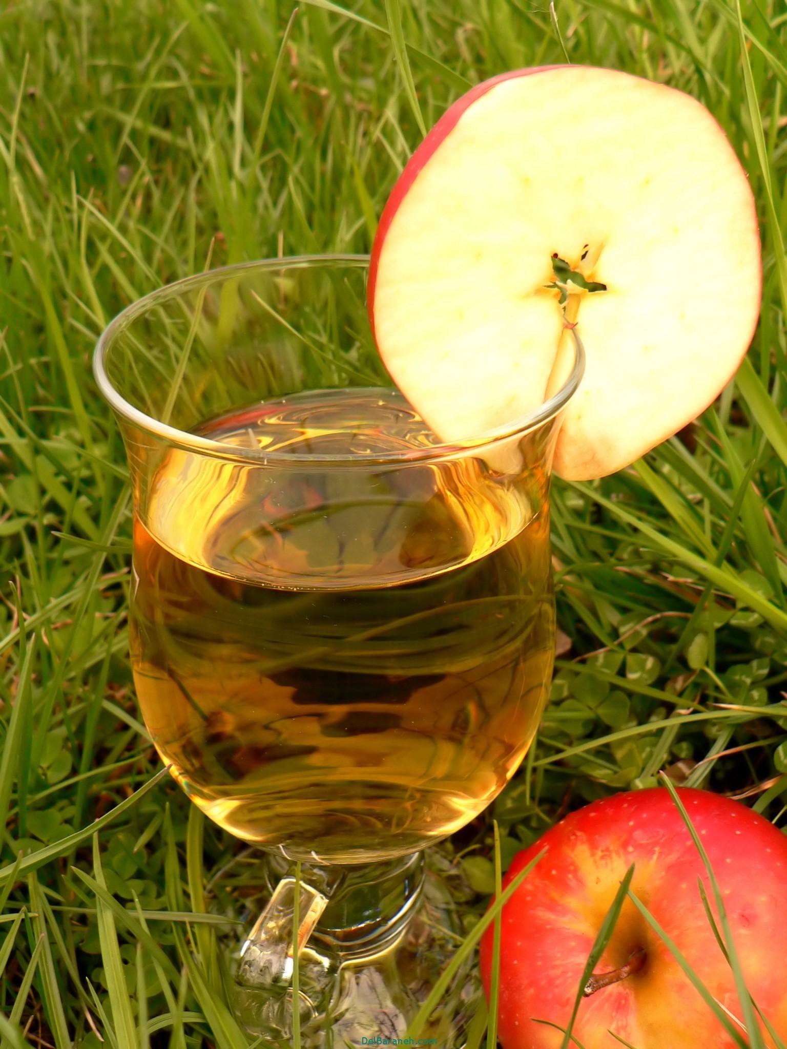 طرز تهیه سرکه سیب (2)