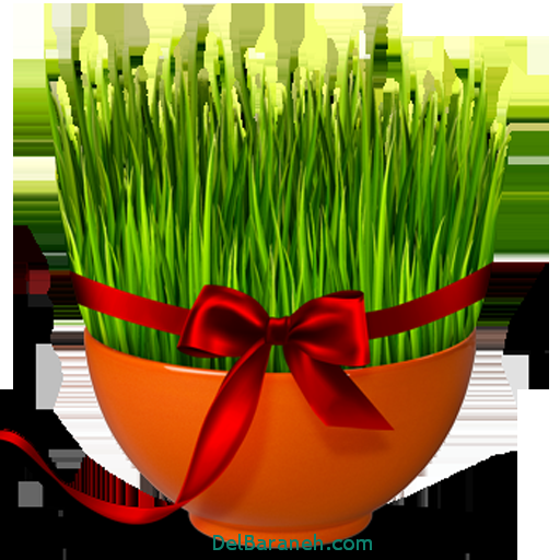 مناسب ترین زمان برای سبزه انداختن  عید نوروز 96