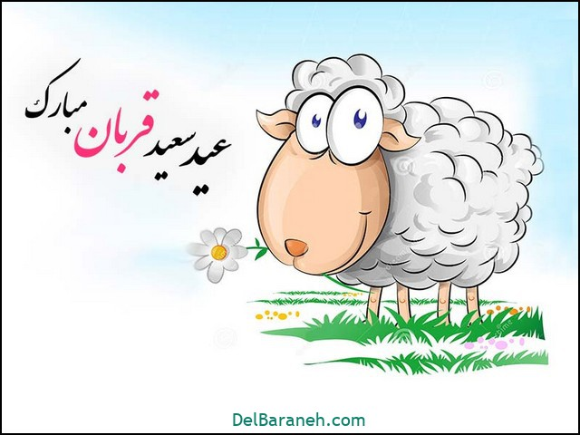 انشا عید قربان (۴۱)