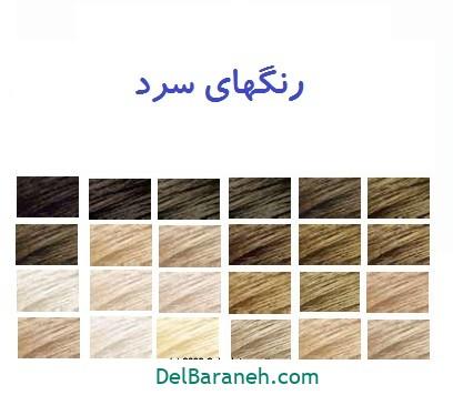 رنگ مو برای پوست سبزه (۹)