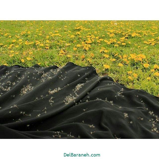 عکس چادری (۳۸)