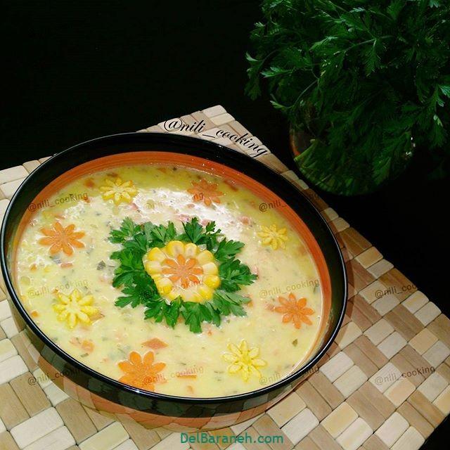 انواع سوپ تزیین سوپ (۱۹)
