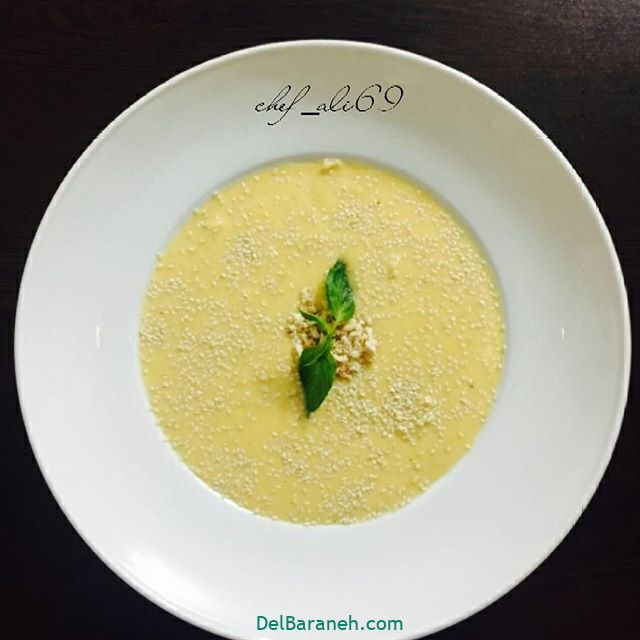 انواع سوپ تزیین سوپ (۳۵)
