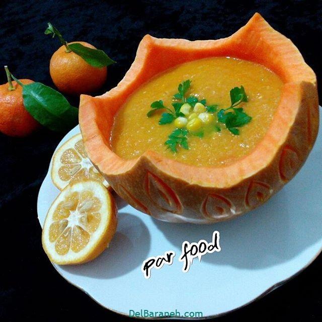 انواع سوپ تزیین سوپ (۴۱)