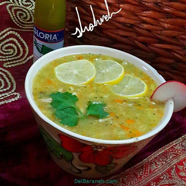 انواع سوپ تزیین سوپ (۷۸)