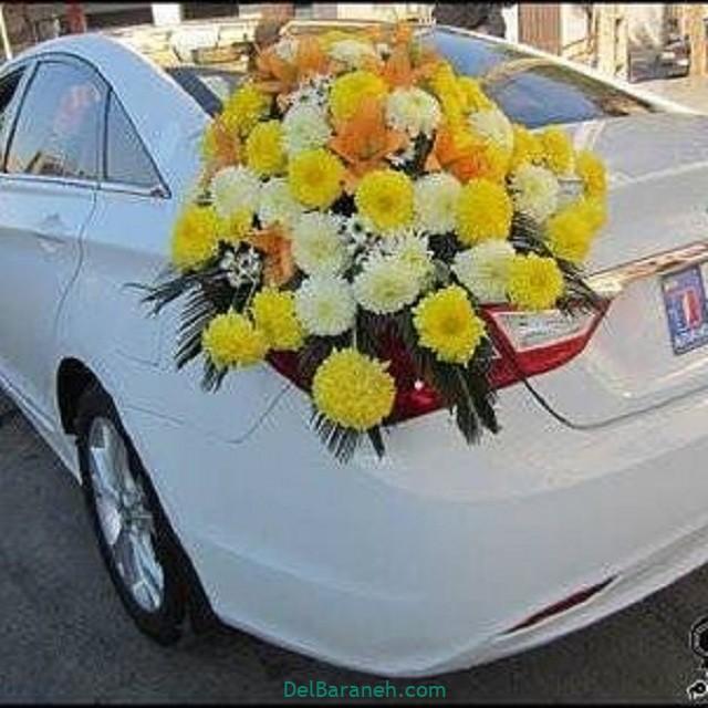 مدل ماشین عروس (۱۱)