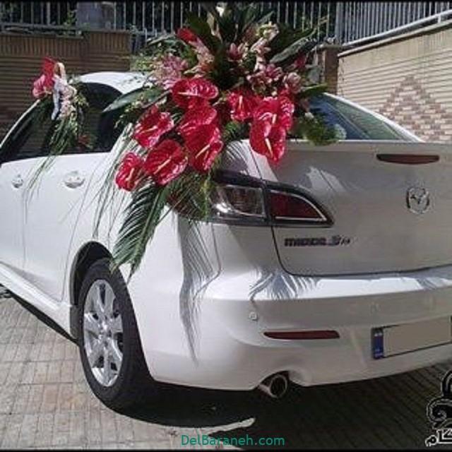 مدل ماشین عروس (۱۷)