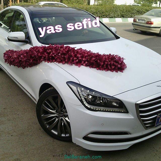 مدل ماشین عروس (۲۴)