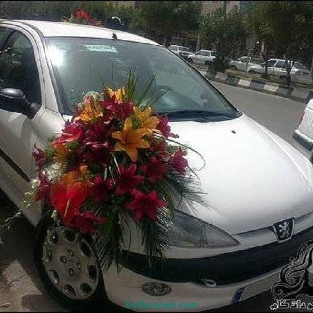 مدل ماشین عروس (۵)