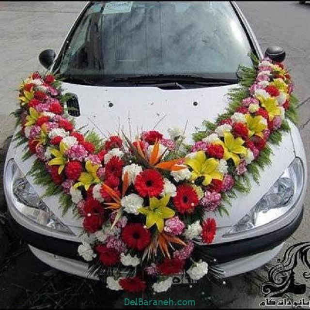 مدل ماشین عروس (۶)