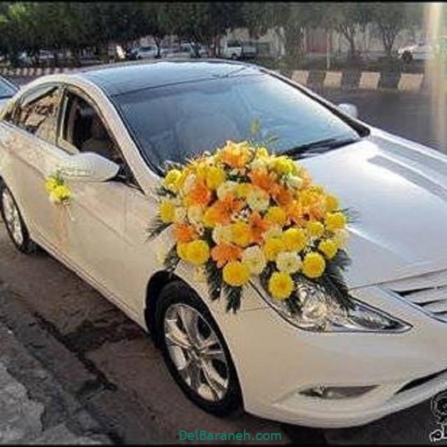 مدل ماشین عروس (۸)