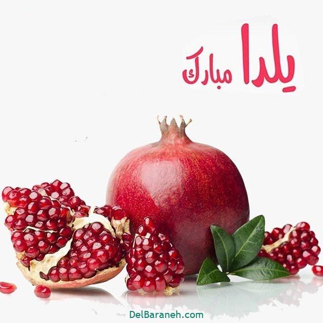 یلدا مبارک (۲۵)