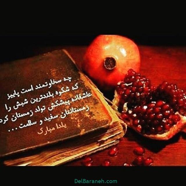 یلدا مبارک (۳۲)