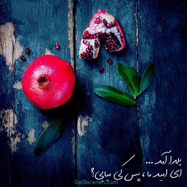 یلدا مبارک (۳۵)