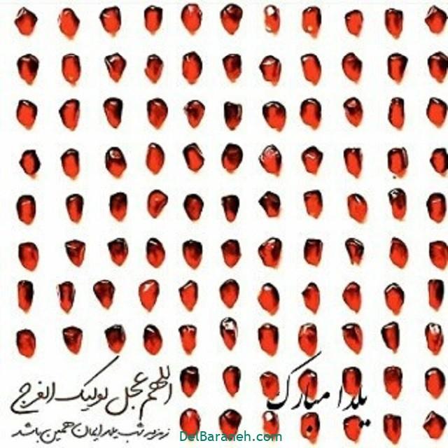 یلدا مبارک (۴۳)