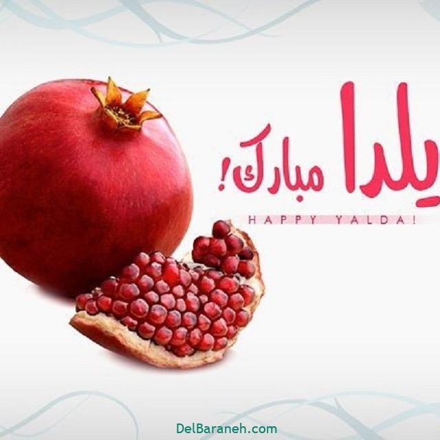 یلدا مبارک (۴۹)