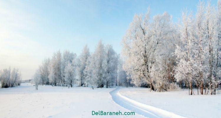 انشا در مورد زمستان (۶)