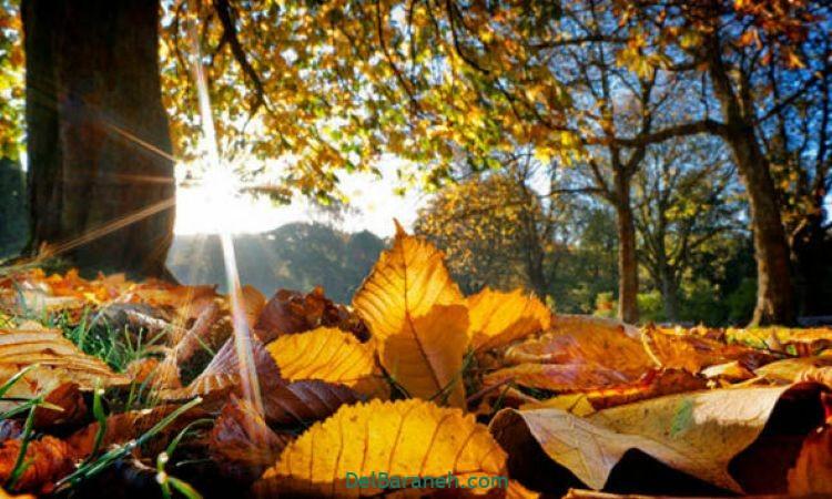 انشا در مورد پاییز (۷)