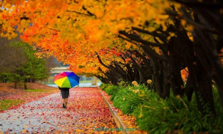 انشا در مورد پاییز (۹)