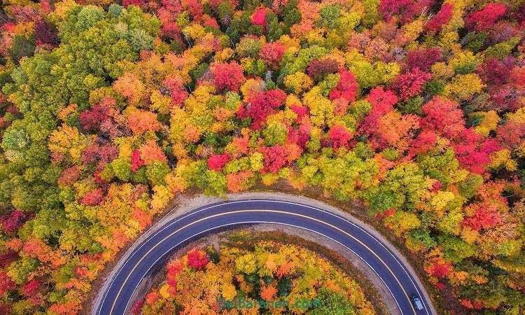 متن ادبی در مورد پاییز