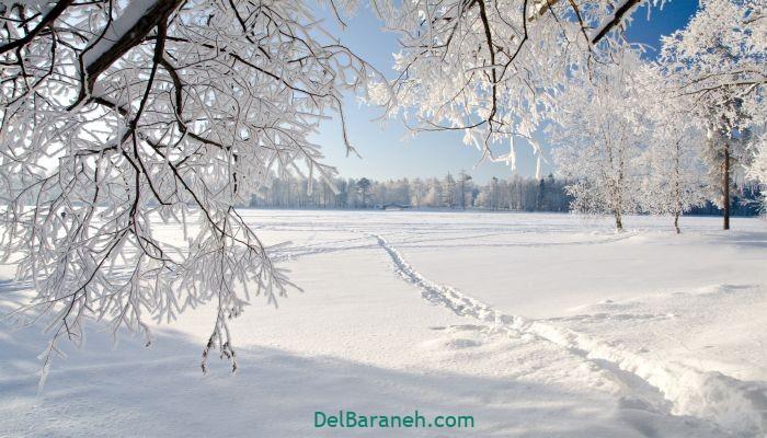 انشا یک روز برفی (۵)