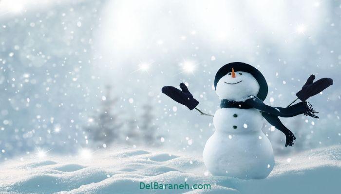 انشا یک روز برفی (۸)