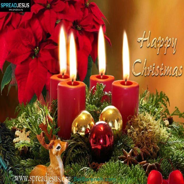 تبریک کریسمس با تصویر (۱۱)