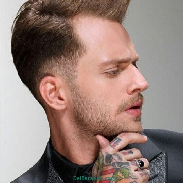 ته ریش مردانه (۱۳)