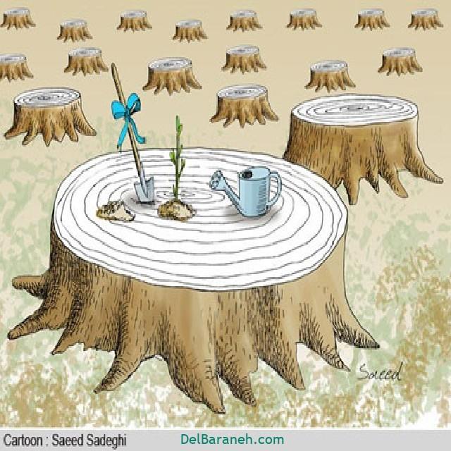 نقاشی درخت درختکاری (۱۶)