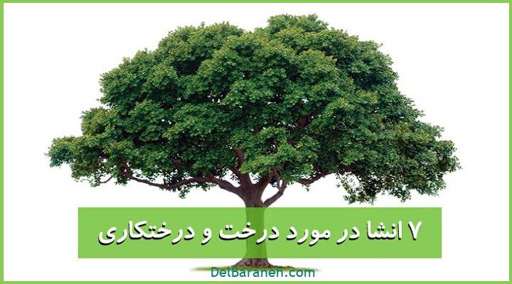 انشا در مورد درخت و درختکاری
