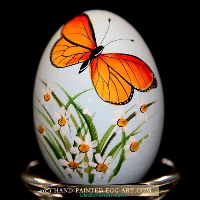 رنگ کردن تخم مرغ (۲)