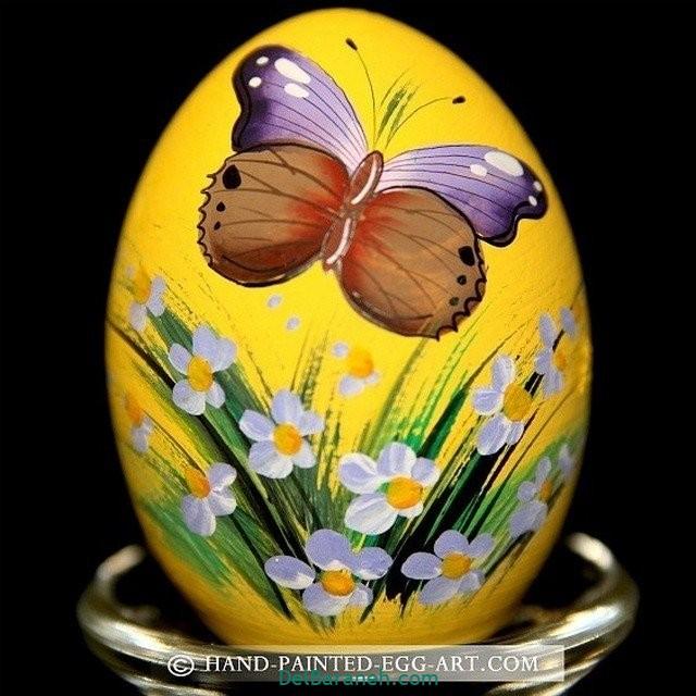 رنگ کردن تخم مرغ (۲۴)