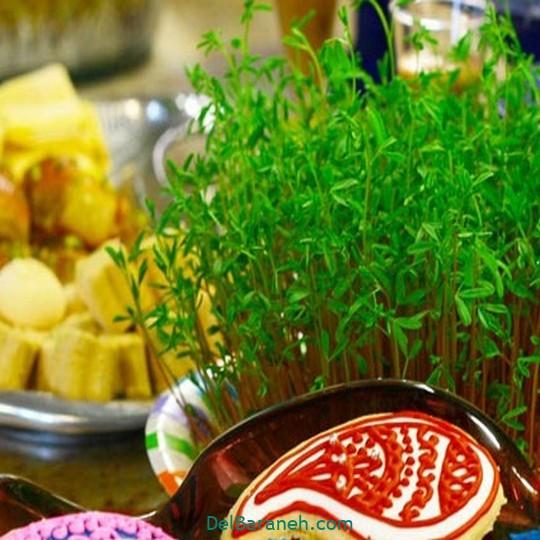 سبزه عید با عدس (۱)