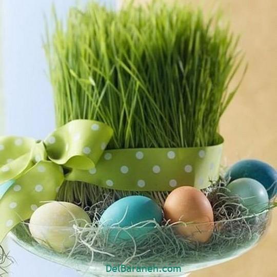سبزه عید با گندم (۱)