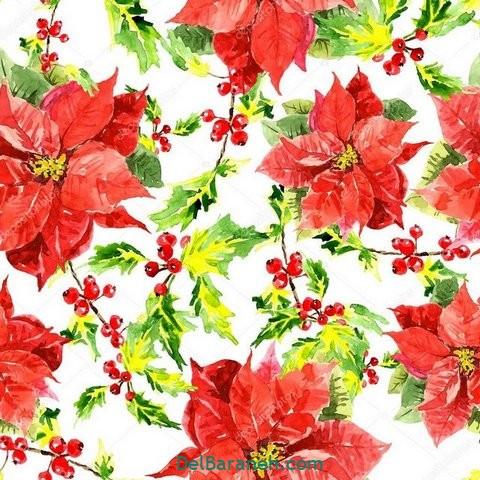طرح گل گلی (۱)