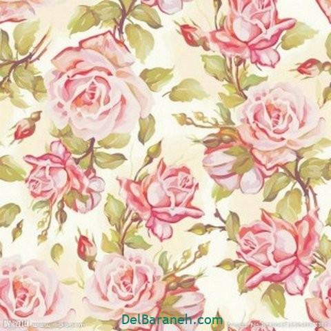 گل گلی (۱۳)