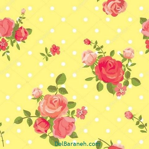 گل گلی (۱۴)