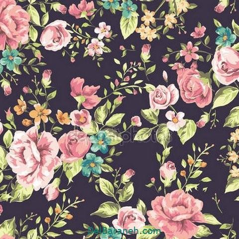 گل گلی (۱۵)