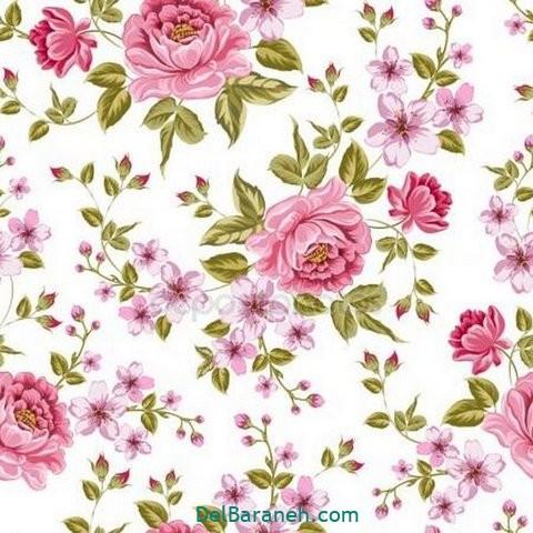 گل گلی (۱۶)