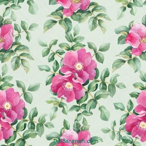 گل گلی (۱۹)