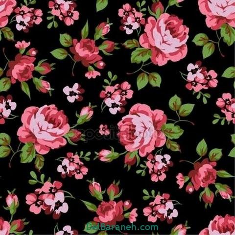 گل گلی (۲)