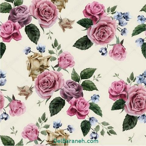 گل گلی (۲۰)