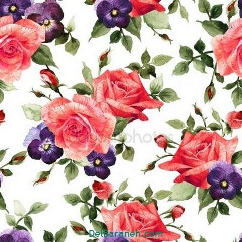 گل گلی (۲۱)